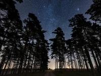 stars-klingvalla-4732