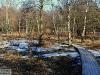 prastskog-6700