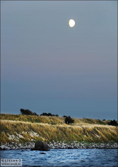 Sommarmåne
