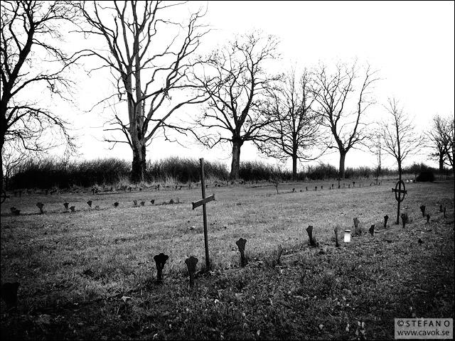 St Lars begravningsplats 2