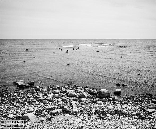 Öppet hav - Smygehuk
