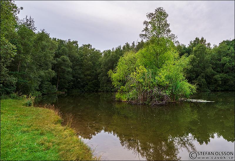 Sommarkväll Boijsens dammar