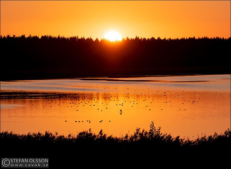 Solnedgång över Krankesjön