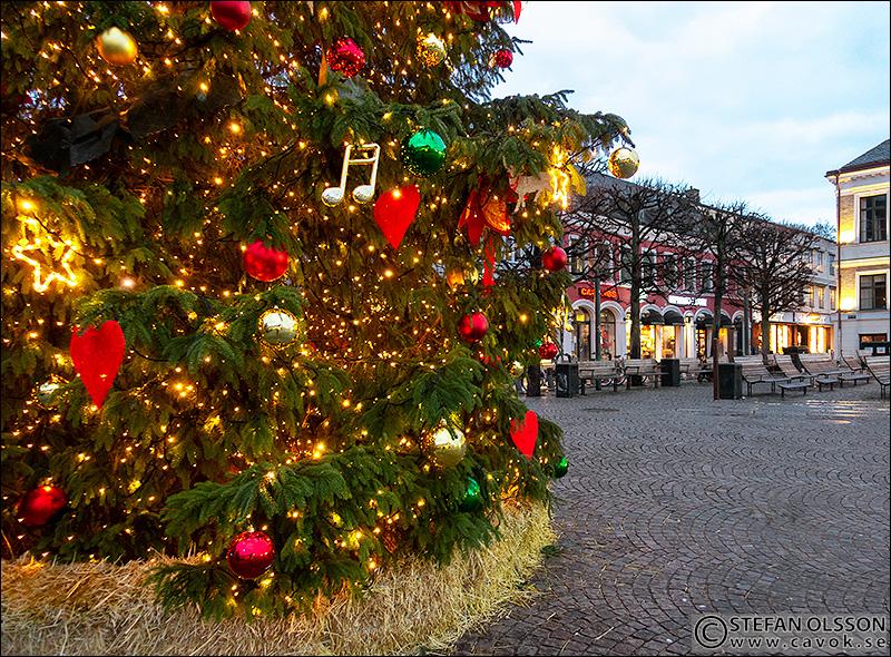 Julgran på Stortorget i Lund