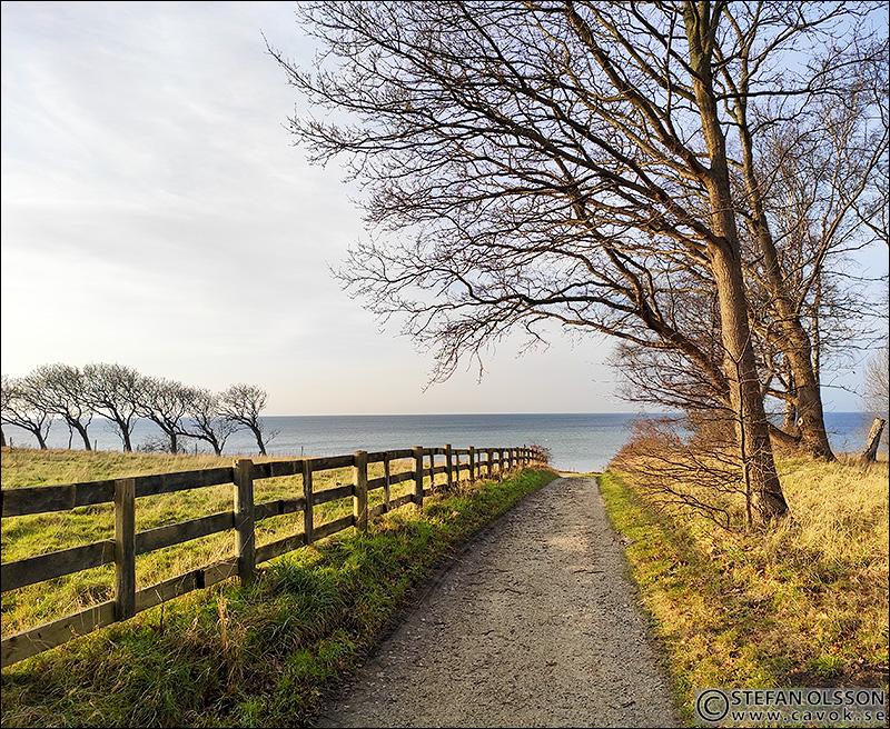 Grusvägen mot Öresundsparken