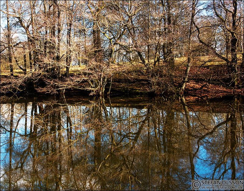 Dammen i Prästaskogen