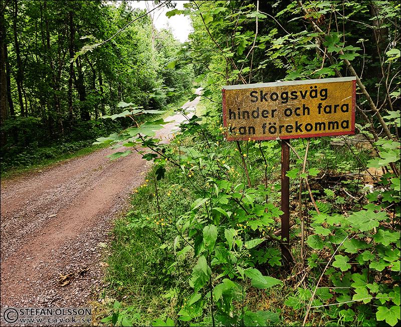 Varningsskylt skogsväg