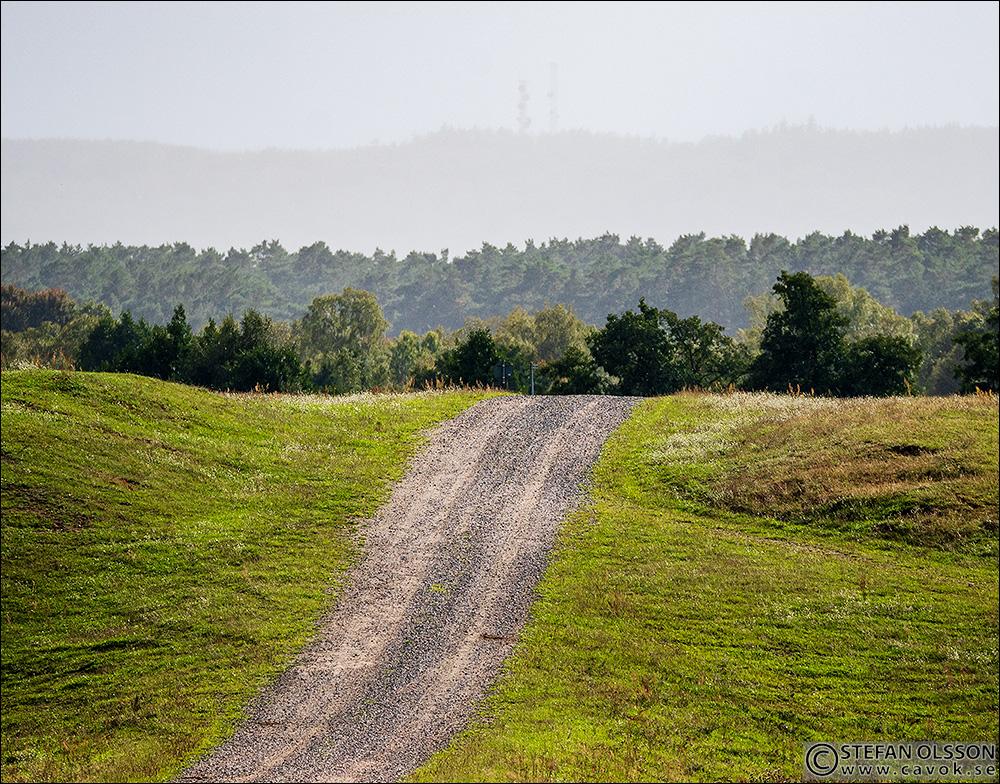 Grusvägen mot åsen