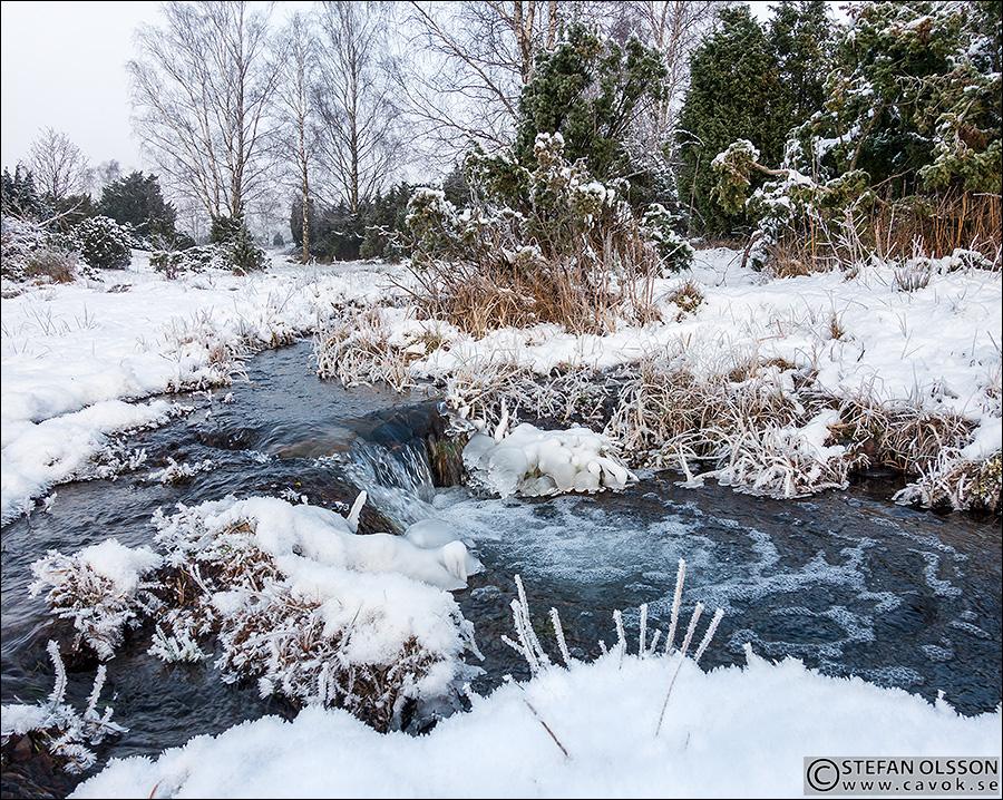 Porlande bäcken genom Måryd på vintern